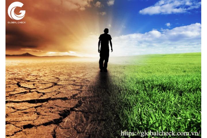 Ô nhiễm đất nông nghiệp đe dọa hệ sinh thái nông nghiệp