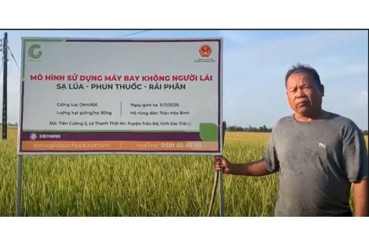 Hiệu quả của mô hình sạ lúa, phun thuốc, rải phân bằng máy bay nông nghiệp P-GLOBALCHECK