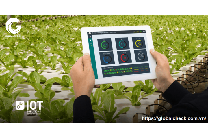 Tại sao nên ứng dụng IoT trong nông nghiệp?
