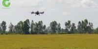 Hiệu ứng lan truyền từ máy bay nông nghiệp P-GLOBALCHECK ở An Giang