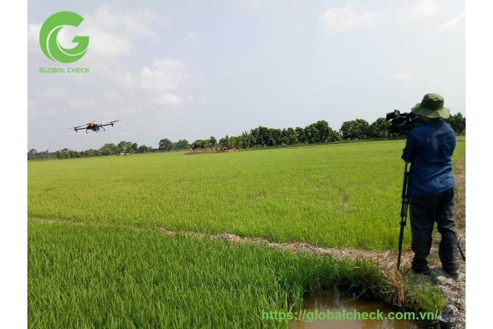 Phun thuốc sâu cho lúa ở Đồng Tháp bằng máy bay nông nghiệp PGxp 2020