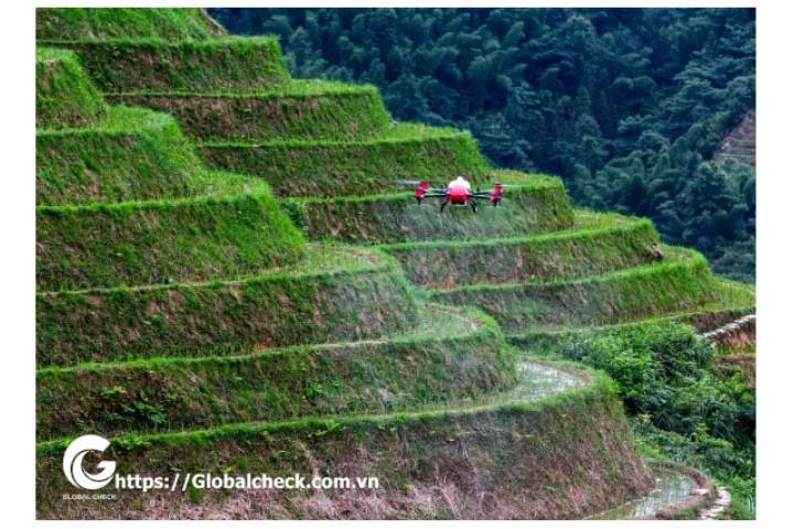 Phá vỡ giới hạn địa hình, làm thế nào để P-GLOBALCHECK thay đổi phương thức sản xuất nông nghiệp truyền thống?