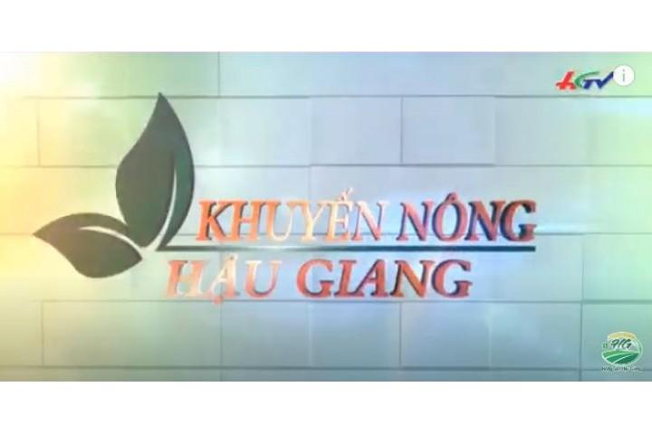 TRUNG TÂM KHUYẾN NÔNG ĐẦU TƯ MÁY BAY PHUN THUỐC Ở HẬU GIANG