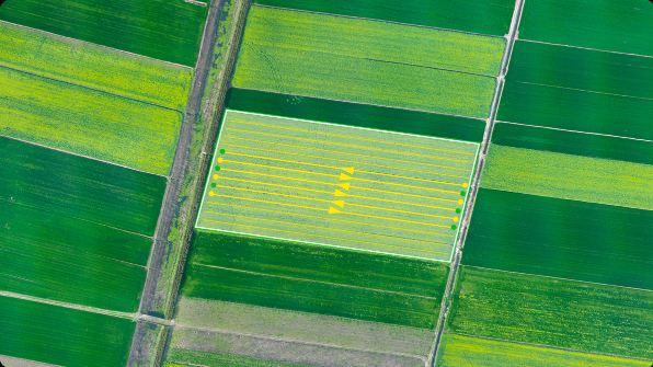 chế độ cơ bản của máy bay nông nghiệp pgxp