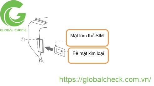 lap-the-sim