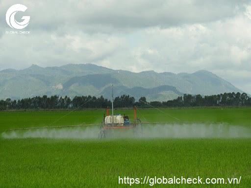 cách phun thuốc trừ sâu an toàn