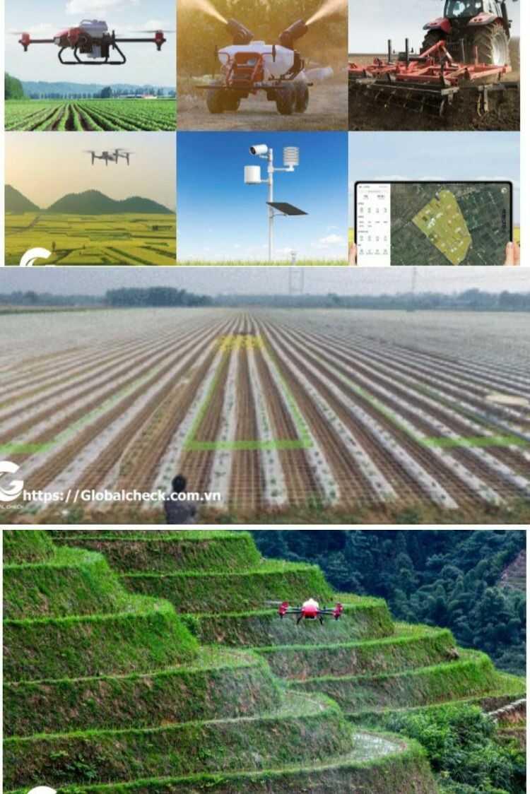 ứng dụng mô hình IoT trong nông nghiệp chính xác