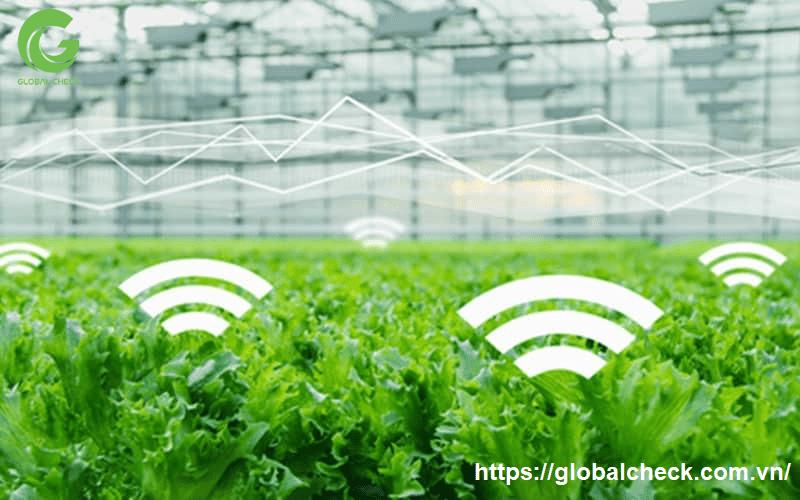Tin tức, tài liệu: Lợi ích của ứng dụng IoT trong nông nghiệp Iot-trong-nong-nghiep-2