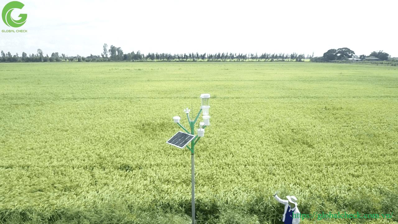 Tin tức, tài liệu: Lợi ích của ứng dụng IoT trong nông nghiệp Iot-trong-nong-nghiep-3