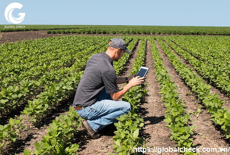 Tin tức, tài liệu: Lợi ích của ứng dụng IoT trong nông nghiệp Iot-trong-nong-nghiep-4