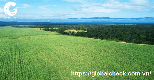 máy bay phun thuốc nông nghiệp ở tây ninh